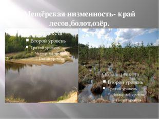 Мещёрская низменность- край лесов,болот,озёр.
