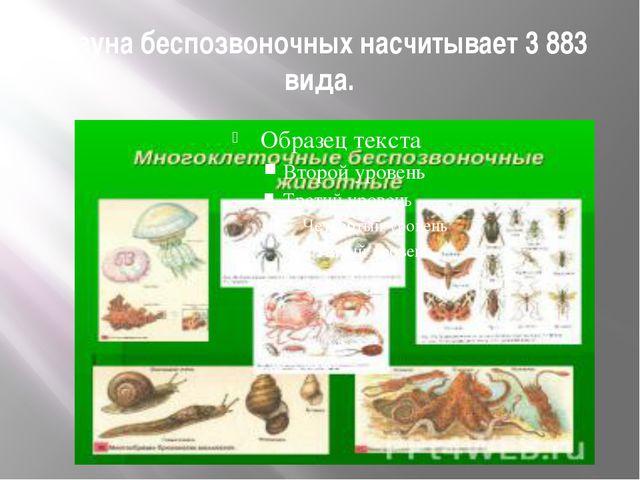 Фауна беспозвоночных насчитывает 3 883 вида.