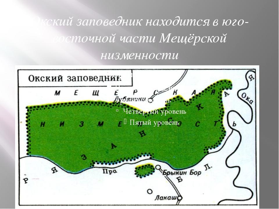 Окский заповедник находится в юго-восточной части Мещёрской низменности
