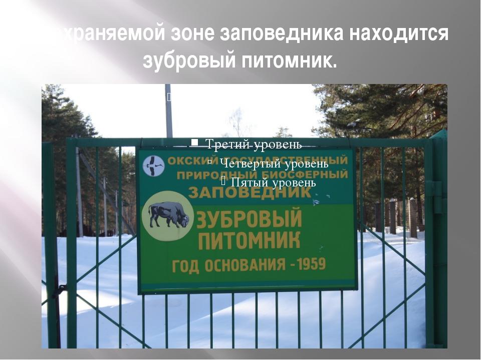 В охраняемой зоне заповедника находится зубровый питомник.
