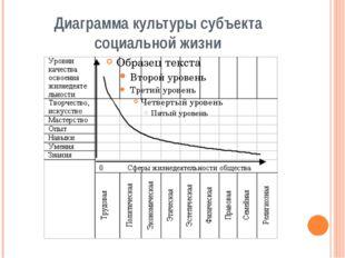 Диаграмма культуры субъекта социальной жизни