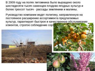 В 2009 году на полях питомника было выращено около шестидесяти тысяч саженцев