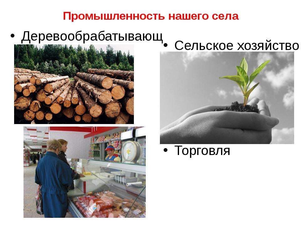 Промышленность нашего села Деревообрабатывающая Сельское хозяйство Торговля
