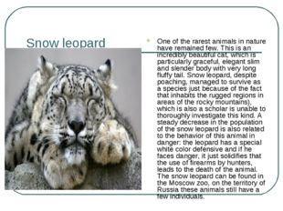 Snow leopard One of the rarest animals in nature have remained few. This is a