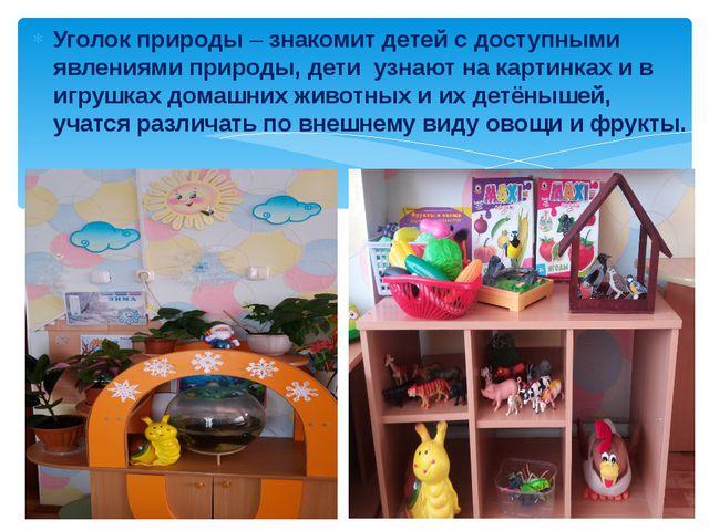 Уголок природы – знакомит детей с доступными явлениями природы, дети узнают н...