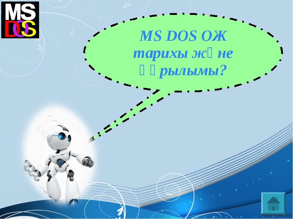 MS DOS ОЖ тарихы және құрылымы?