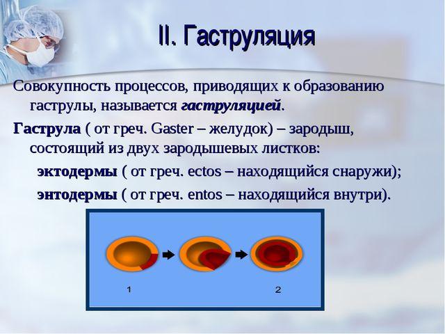 II. Гаструляция Совокупность процессов, приводящих к образованию гаструлы, на...