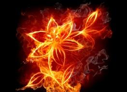 Картинки с огнем
