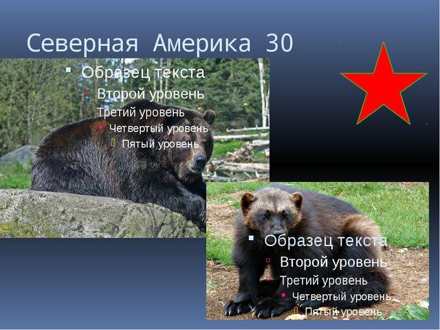 Евразия 10 Покажите границу между Европой и Азией