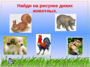 Найди на рисунке диких животных.