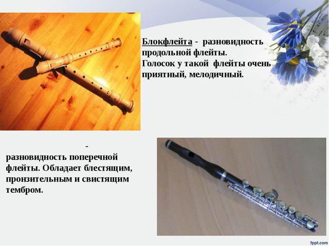 Блокфлейта - разновидность продольной флейты. Голосок у такой флейты очень пр...