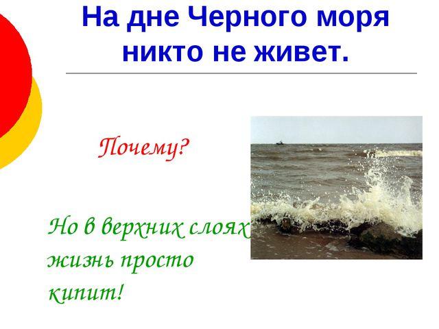 На дне Черного моря никто не живет.   Почему? Но в верхних слоях жизнь пр...