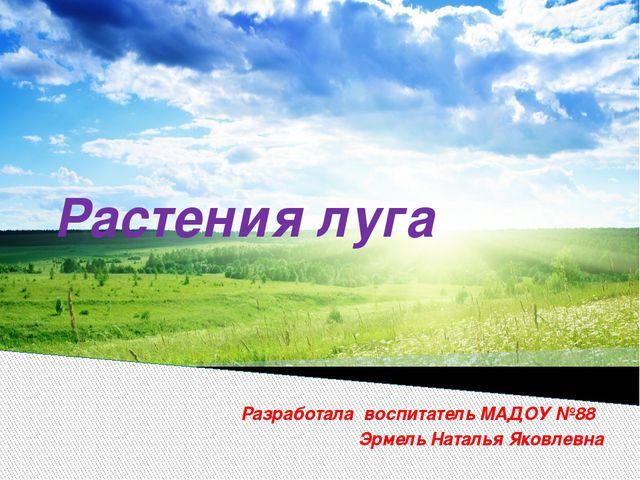 Растения луга Разработала воспитатель МАДОУ №88 Эрмель Наталья Яковлевна