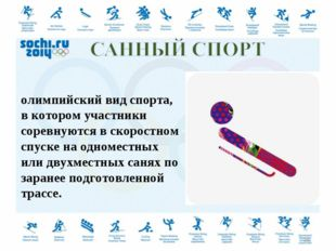 Са́нный спорт — зимний олимпийский вид спорта, в котором участники соревнуютс