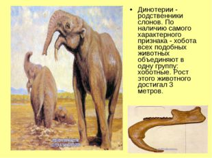 Динотерии - родственники слонов. По наличию самого характерного признака - хо