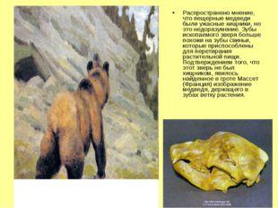 Распространено мнение, что пещерные медведи были ужасные хищники, но это недо