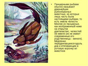 Панцирными рыбами обычно называют древнейших рыбообразных животных, из которы