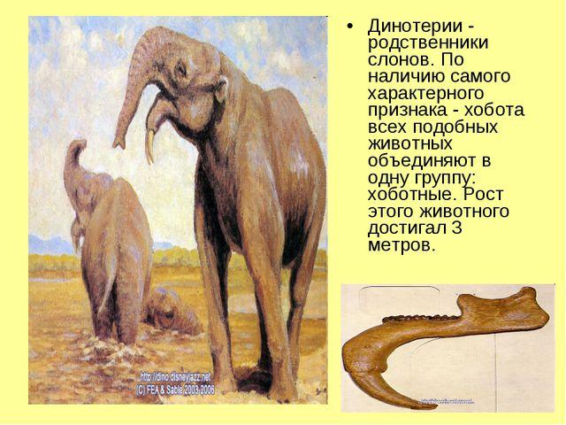 Динотерии - родственники слонов. По наличию самого характерного признака - хо...