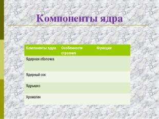 Компоненты ядра Компоненты ядраОсобенности строенияФункции Ядерная оболочка