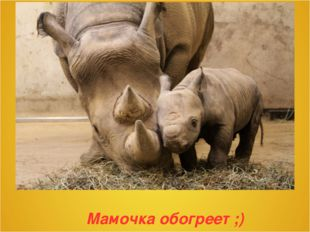 Мамочка обогреет ;)