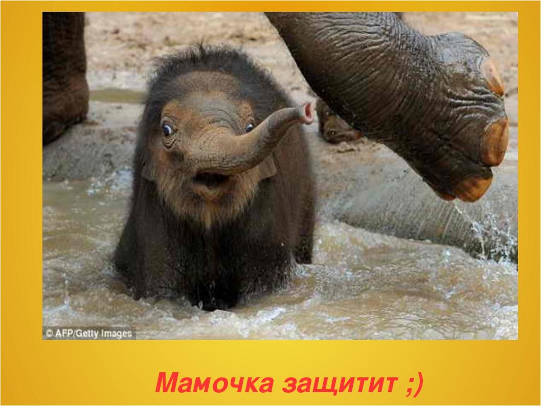 Мамочка защитит ;)