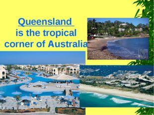 Queensland is the tropical corner of Australia