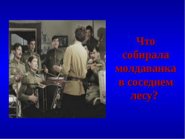 Что собирала молдаванка в соседнем лесу?
