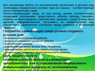 Для организации работы по экологическому воспитанию в детском саду необходимы