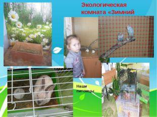 Экологическая комната «Зимний сад» Наши питомцы