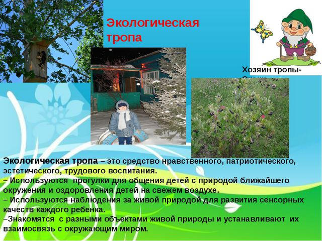 Экологическая тропа Хозяин тропы-Экоша Экологическая тропа – это средство нр...