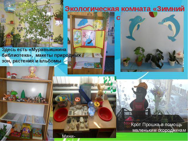 Экологическая комната «Зимний сад» Мини-лаборатория Крот Прошка-в помощь мале...