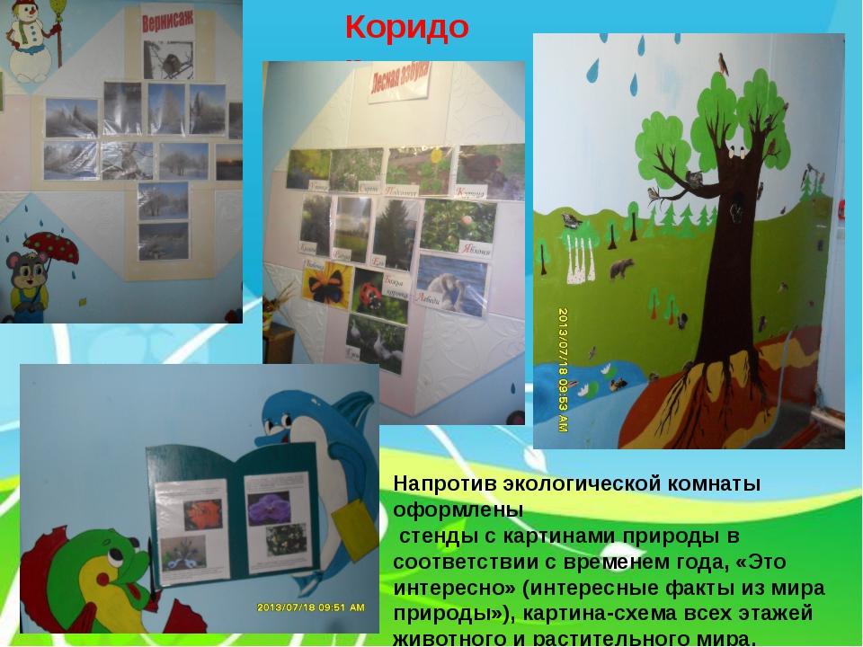 Коридор Напротив экологической комнаты оформлены стенды с картинами природы в...