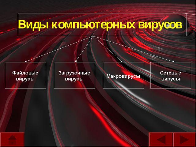 Виды компьютерных вирусов Файловые вирусы Загрузочные вирусы Макровирусы Сете...
