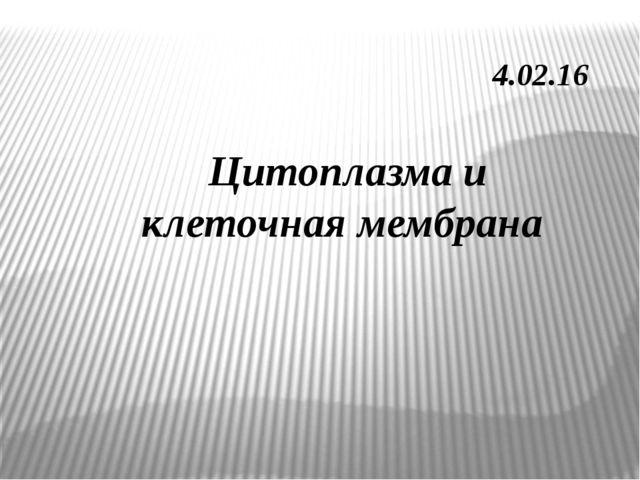 4.02.16 Цитоплазма и клеточная мембрана