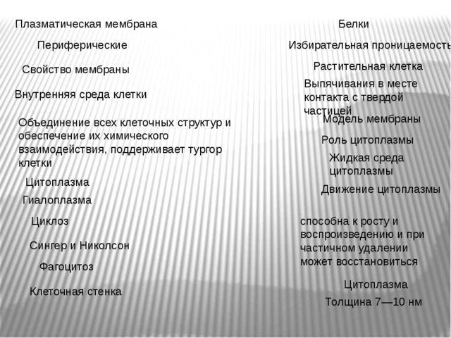 Плазматическая мембрана Толщина 7—10 нм Сингер и Николсон Модель мембраны Пер...