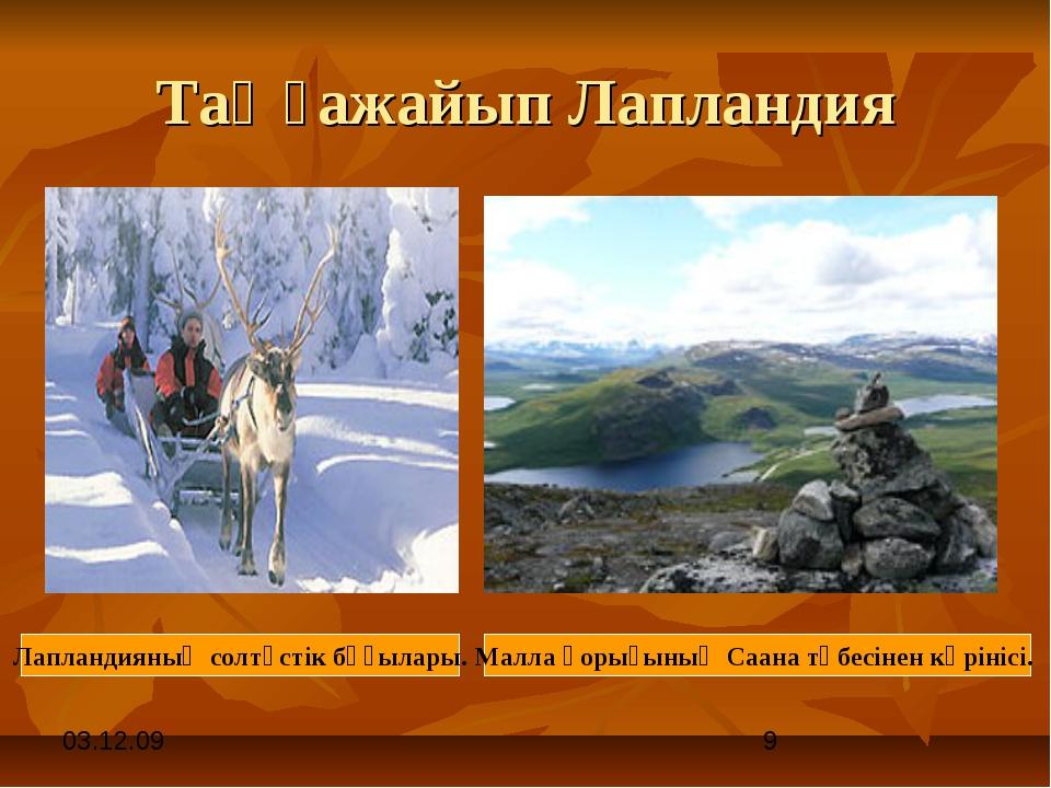 Таңғажайып Лапландия Лапландияның солтүстік бұғылары. Малла қорығының Саана т...