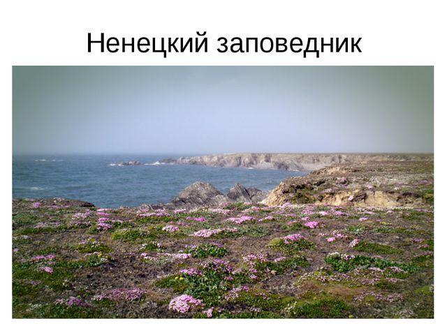 Ненецкий заповедник