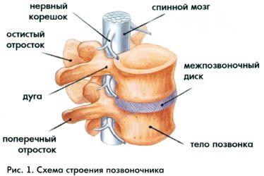 http://static.interneturok.cdnvideo.ru/content/konspekt_image/67609/d4714cc0_1357_0131_0814_12313d0128c8.jpg