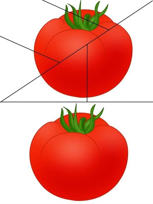 разрезные картинки овощи цель