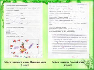 Работа учащихся в паре Познание мира 1 класс Работа ученицы Русский язык 2 кл