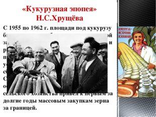 «Кукурузная эпопея» Н.С.Хрущёва С 1955 по 1962 г. площади под кукурузу были у
