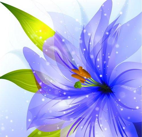 http://floraservice.ru/logo.jpg