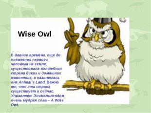 Wise Owl В давние времена, еще до появления первого человека на земле, сущест