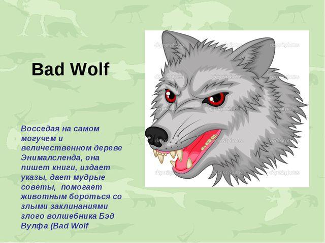 Bad Wolf Восседая на самом могучем и величественном дереве Энималсленда, она...