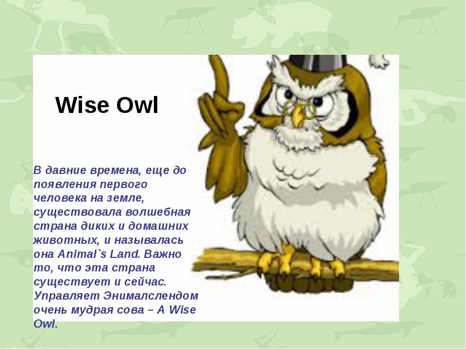 Wise Owl В давние времена, еще до появления первого человека на земле, сущест...
