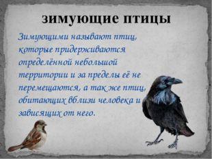 зимующие птицы Зимующими называют птиц, которые придерживаются определённой н