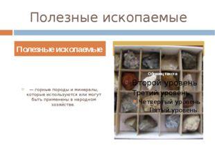 Полезные ископаемые — горные породы и минералы, которые используются или могу