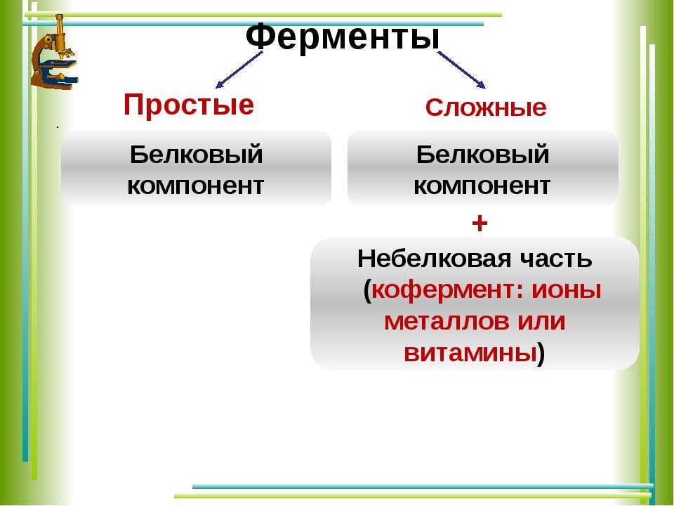 Ферменты Простые .  Сложные Белковый компонент Белковый компонент Небелков...