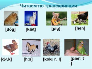 [dόg] [kæt] [hen] [pig] [pærәt] [kokәrәl] [hכ:s] [d k] Читаем по транскрипции