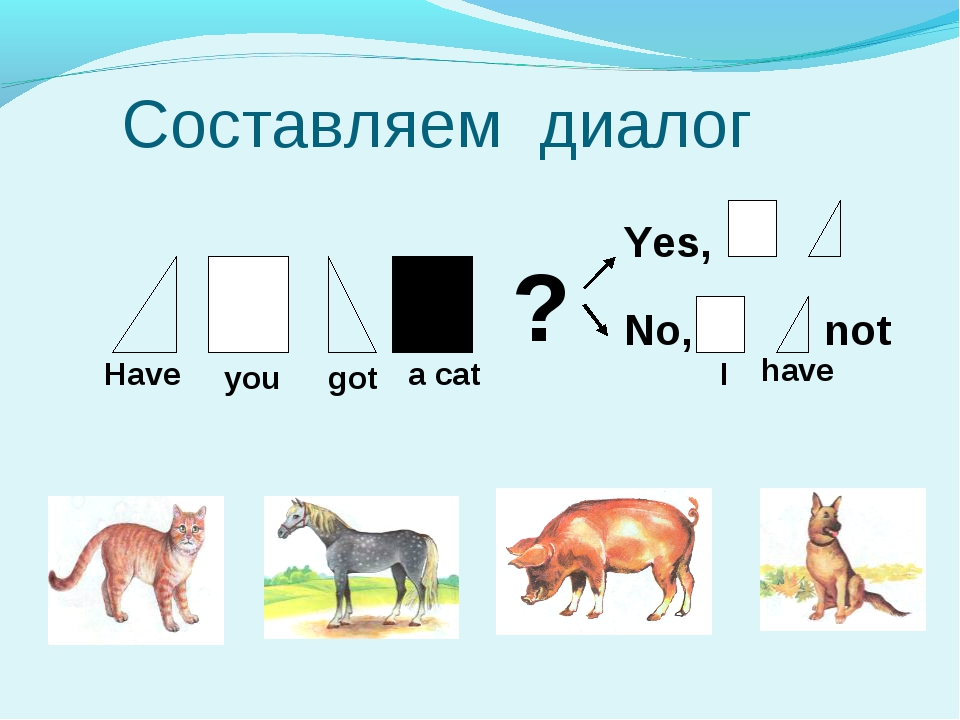 Cоставляем диалог ? Yes, No, not Have you got a cat I have